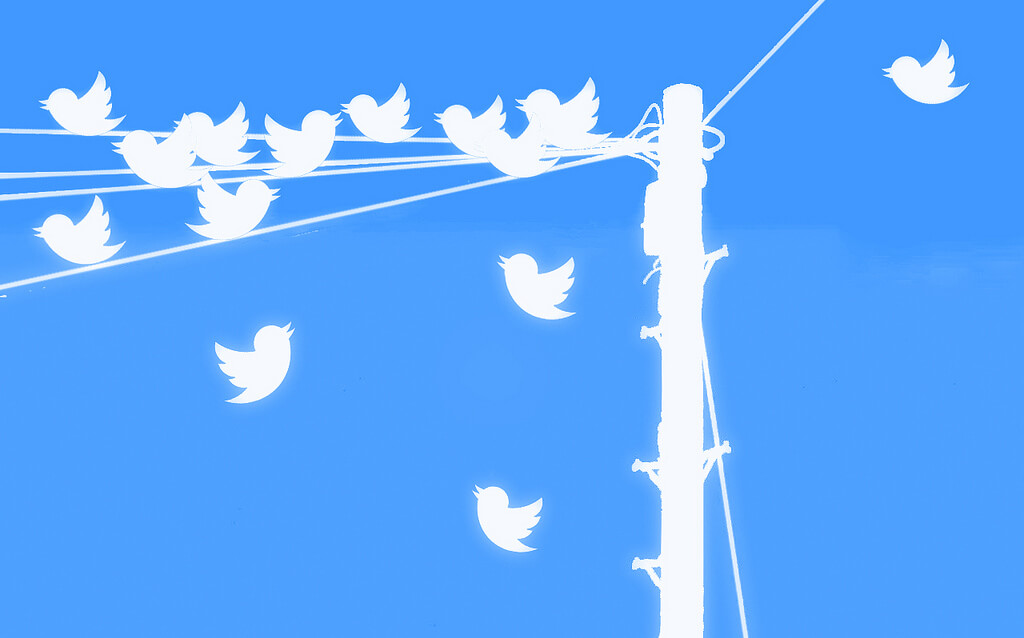 Build your Twitter network